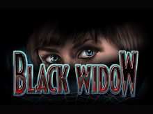 Азартная игра Черная Вдова