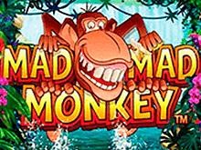 Игровой слот Mad Mad Monkey
