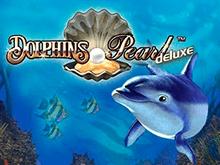 Азартная игра Dolphin's Pearl Deluxe