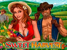Игровой автомат Сладкий Урожай
