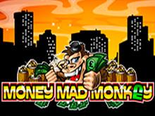 Игровой аппарат Money Mad Monkey