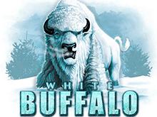 Азартная игра White Buffalo